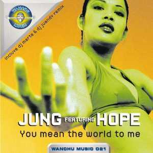 JUNG - You Mean The World To Me (remixes)